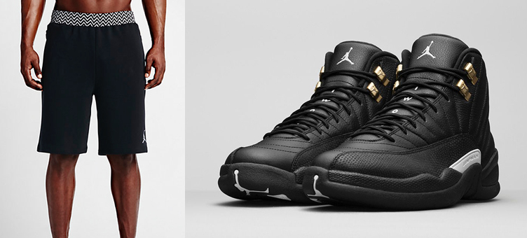 02e3cde910ae62 Air Jordan 12 The Master Shorts