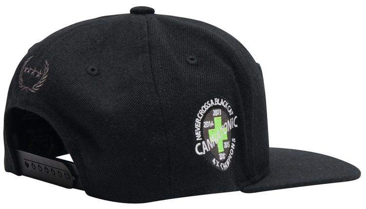 36b3b593014 Jordan 13 Black Cat Snapback and Dad Hats