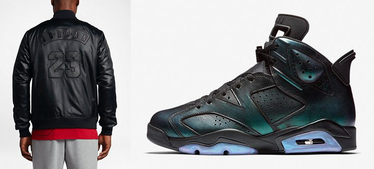 air-jordan-6-all-star-chamelon-jacket