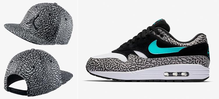 ddba3d52fe1 Nike Air Max 1 Atmos x Jordan Elephant Hat