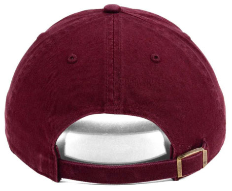 jordan-12-bordeaux-bulls-dad-hat-2