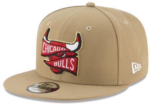 jordan-wheat-bulls-hat-match-6