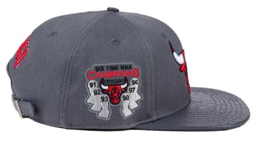 jordan-10-cool-grey-bulls-matching-hat-3