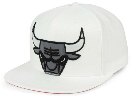 jordan-10-cool-grey-bulls-white-hat-1