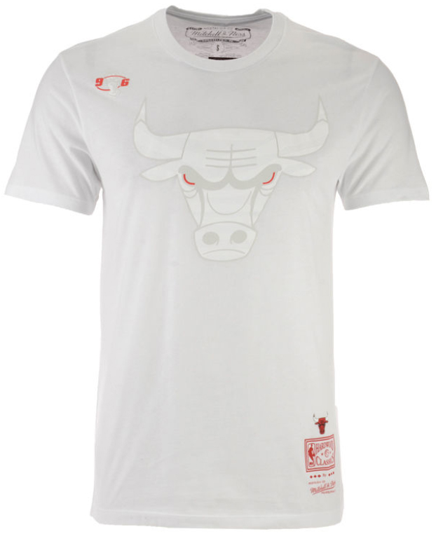 jordan-10-im-back-bulls-shirt-match-3
