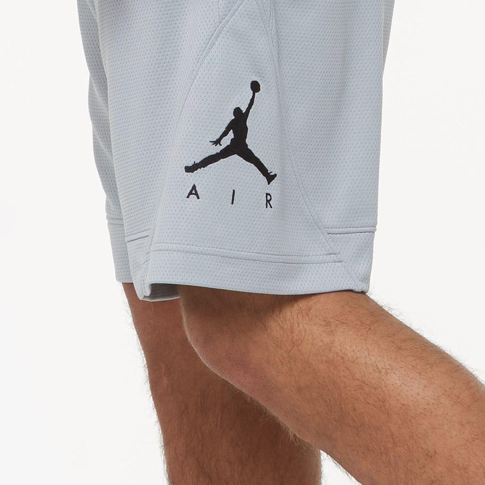 jordan-10-cement-light-smoke-grey-shorts-match-2