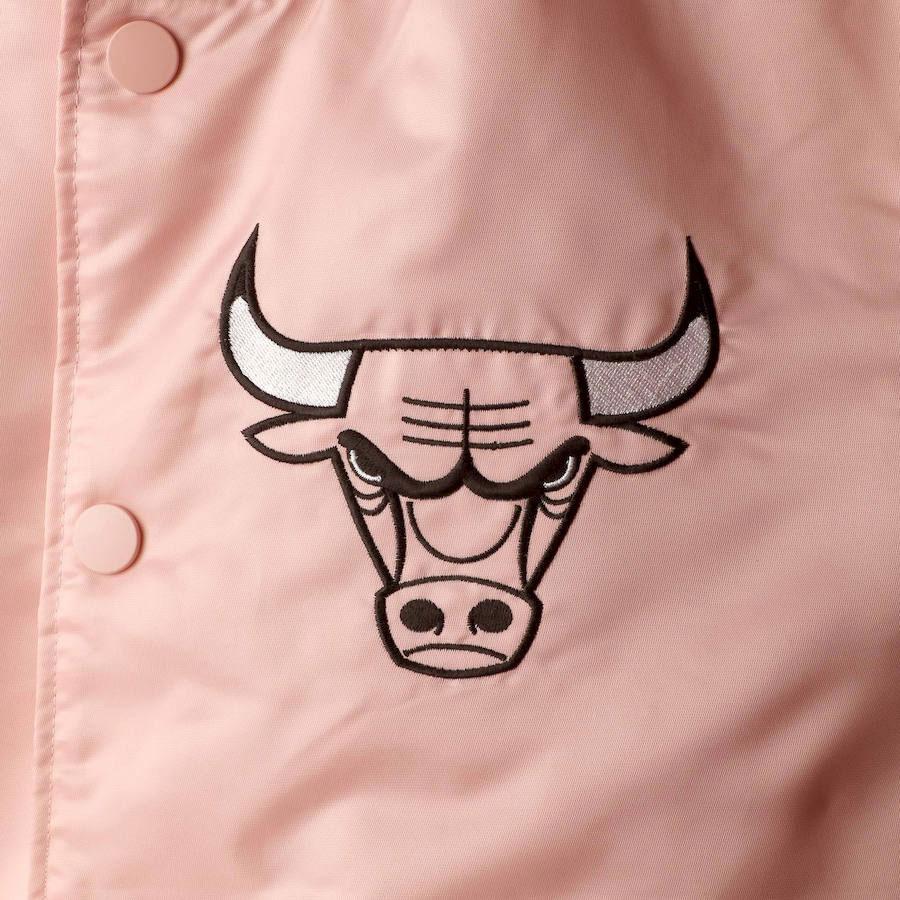 air-jordan-6-aleali-may-pink-bulls-jacket-match-2