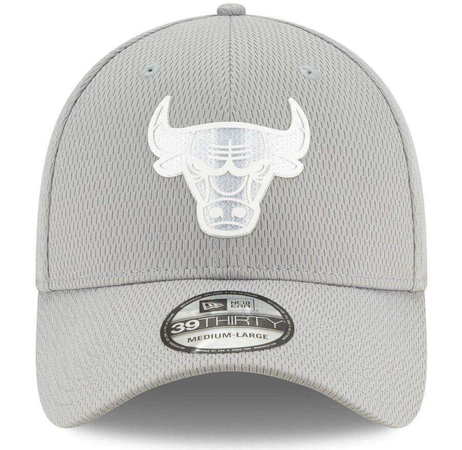 jordan-10-wings-bulls-dad-hat