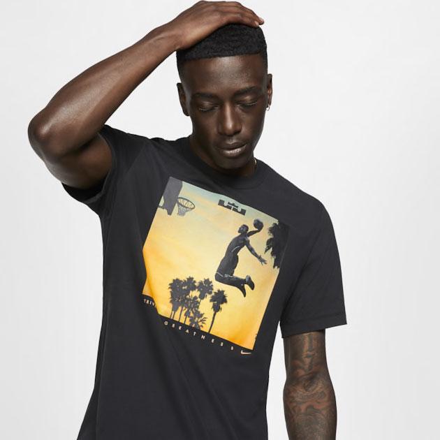 nike-lebron-dunk-shirt