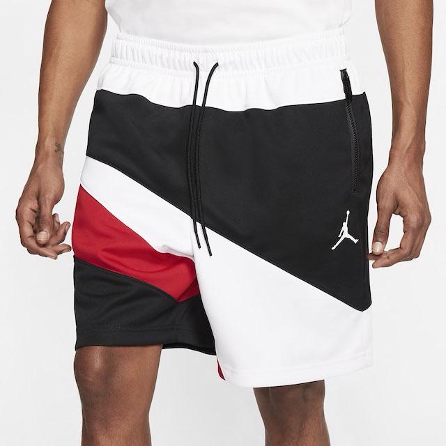 air-jordan-11-low-concord-bred-matching-shorts-1