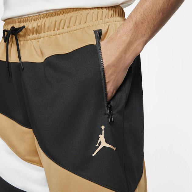jordan-dmp-wave-shorts-1