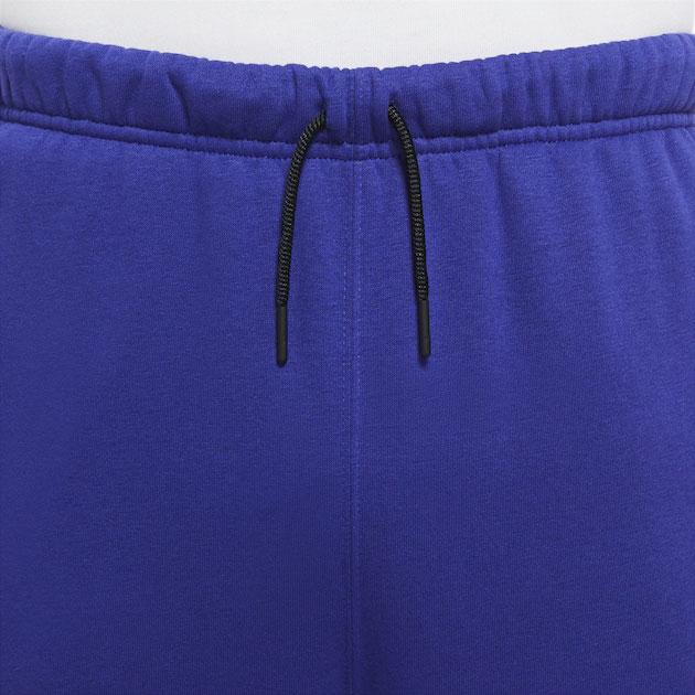 jordan-12-dark-concord-pants-3